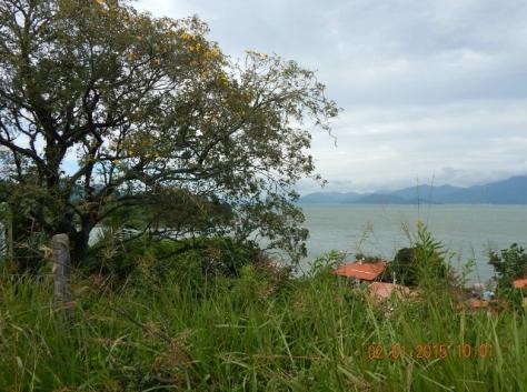 Florianópolis - Dez 2014 (269)
