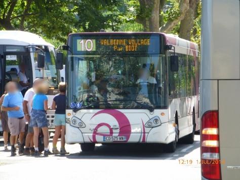 P1040451 (800x600)