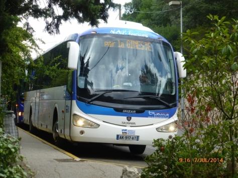 P1040864 (800x600)