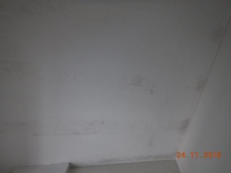 dscn3594-1024x768